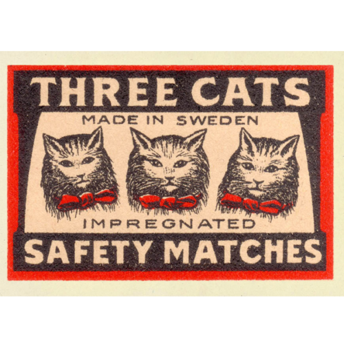 kaart drie katten